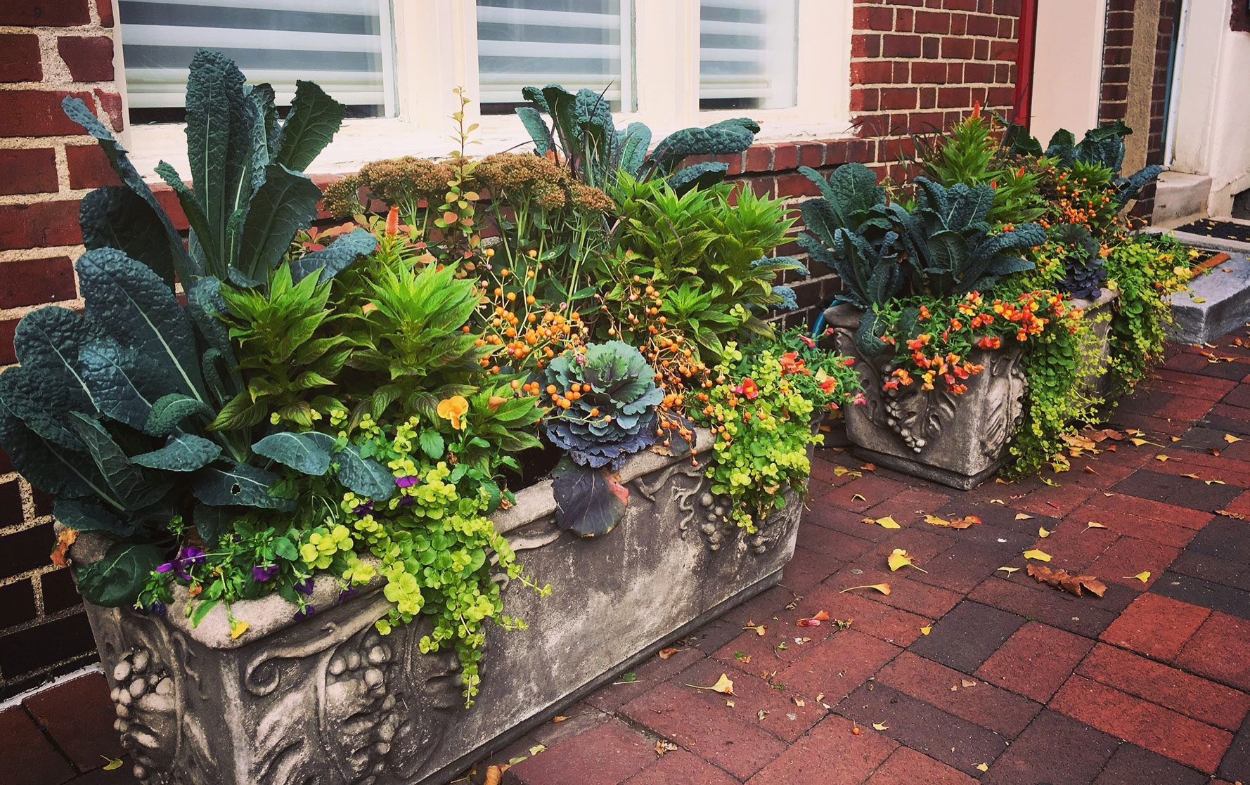 Two Fall Planter Arrangements in Cement Front Door Planters