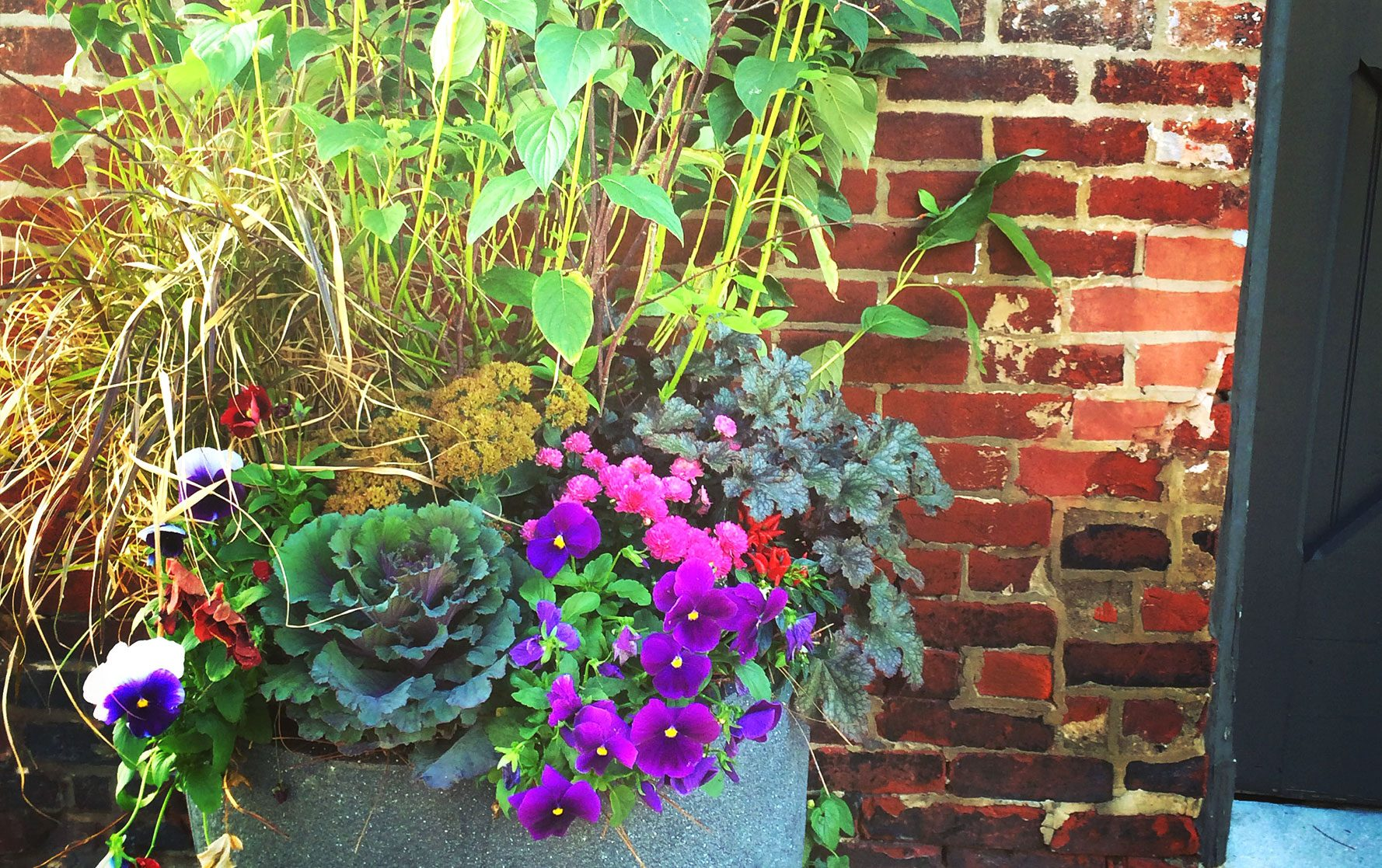 Front Door Fall Planter Arrangement