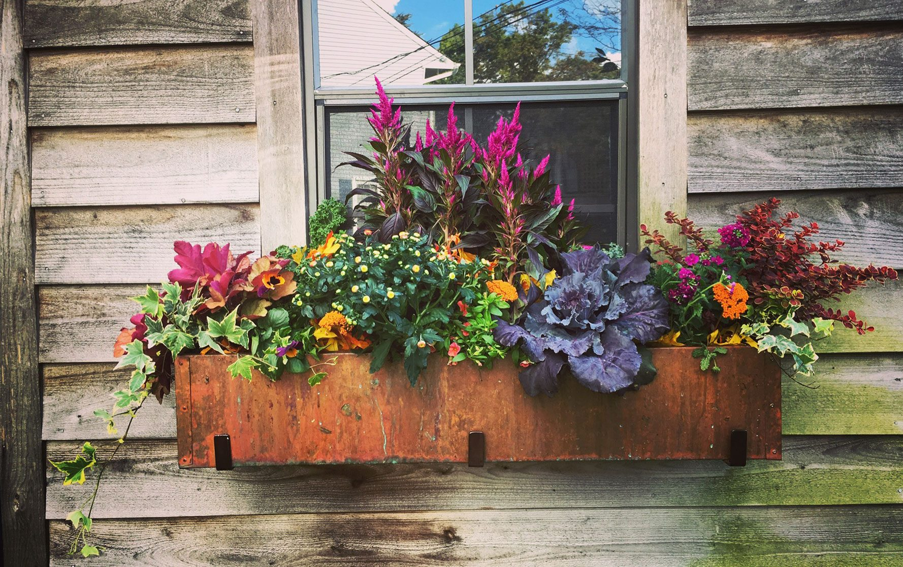 Fall Window Box Arrangement in metal window box