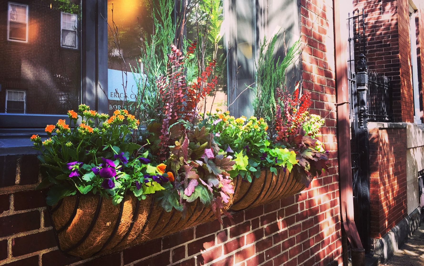 Two Fall Window Box Arrangements
