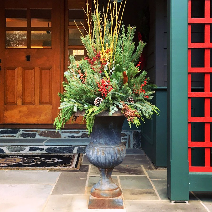 Winter Arrangement with green pine and red berries in an Urn Planter.