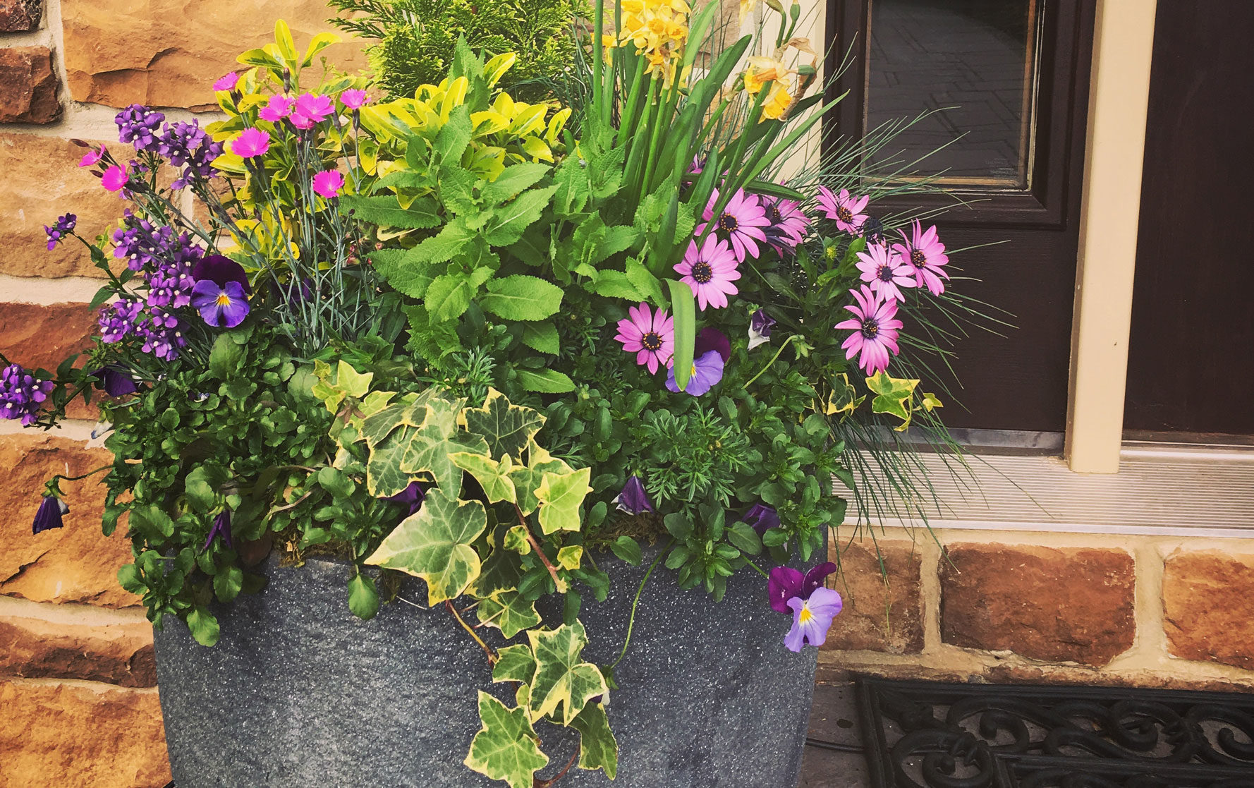 Front Door Spring Planter Arrangement