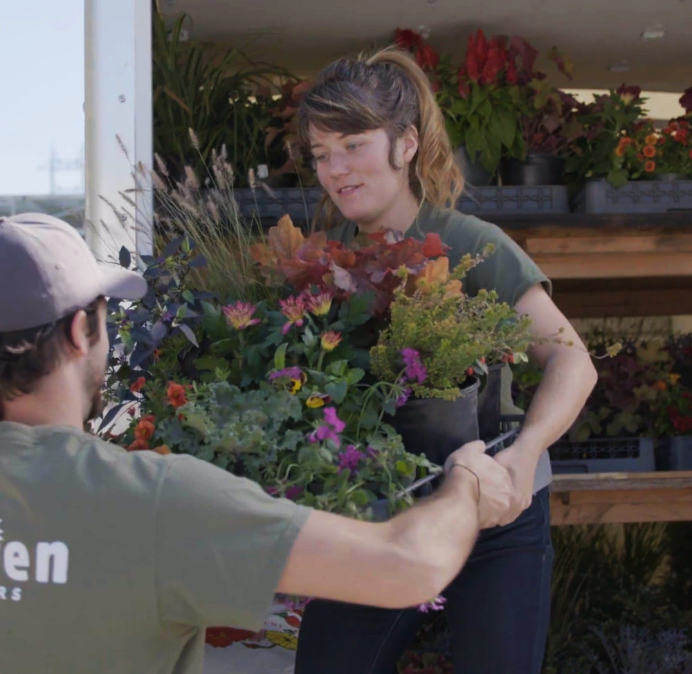 Enliven Planter employee loading truck with plant and flowers for arrangements