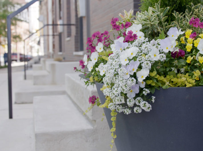 Outdoor Spring Planter with white and purple flowers