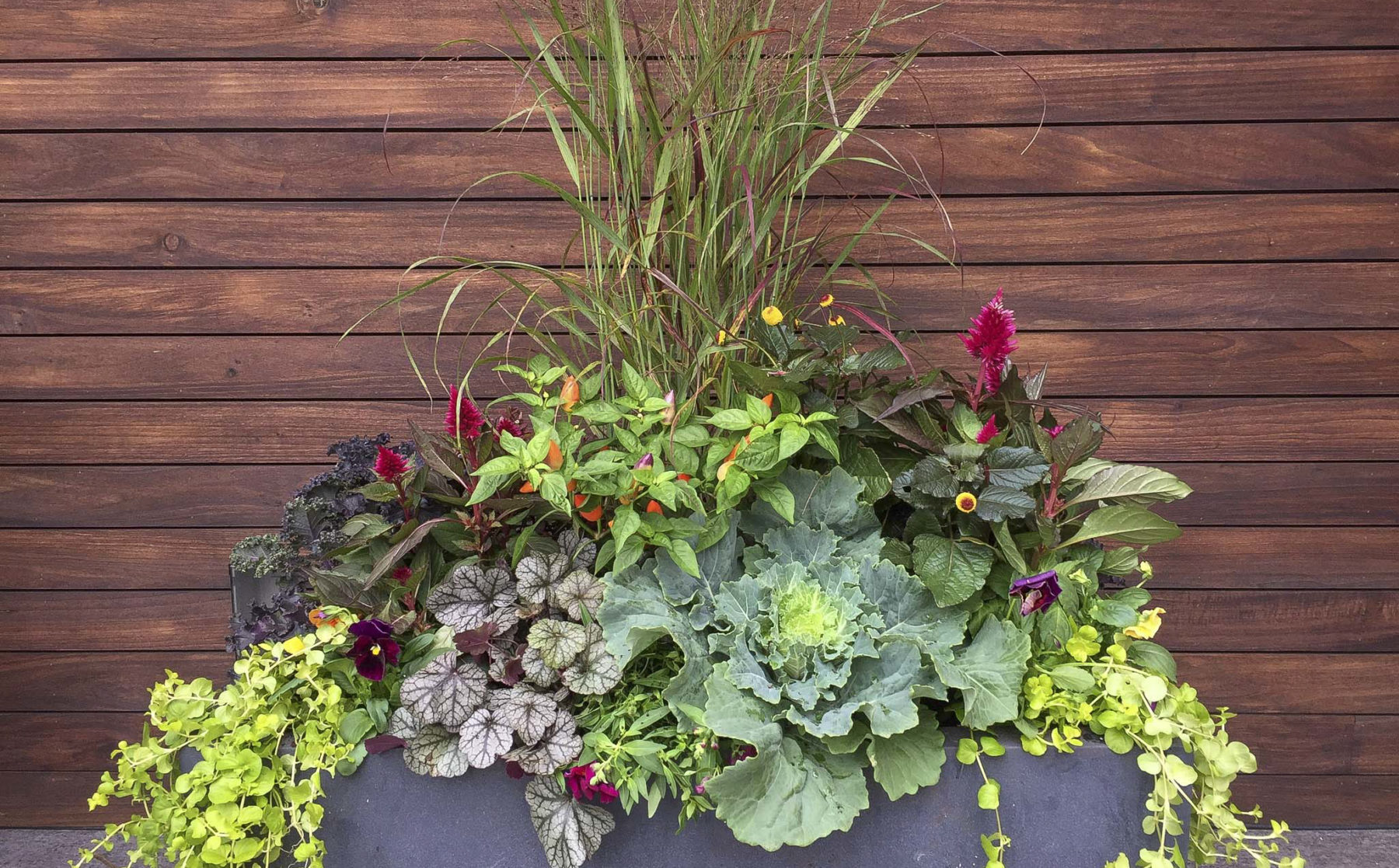 Fall Planter Arrangement