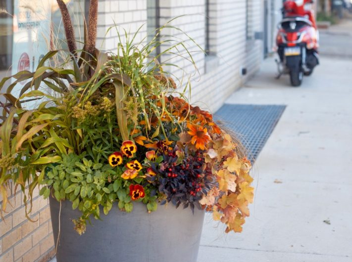 Featured Autumn Planter